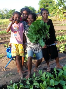 microaid vegetable program