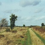 300px-Open_landscape_on_track_from_Swaffham_Prior_to_Reach,_Cambridgeshire_-_geograph.org.uk_-_1476679