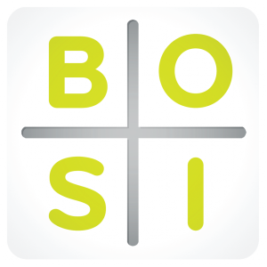 "Alt text for the image, ""Bosi quadrant"""