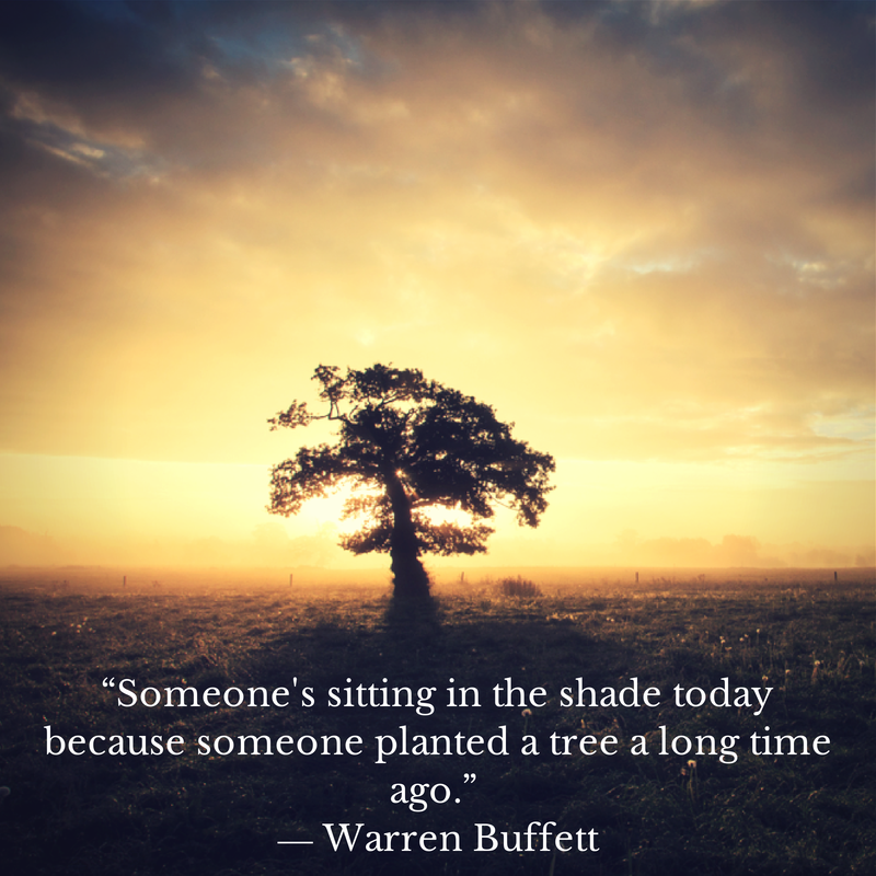 """""""Someone's sitting in the shade today because someone planted a tree a long time ago."""" - Warren Buffett"""
