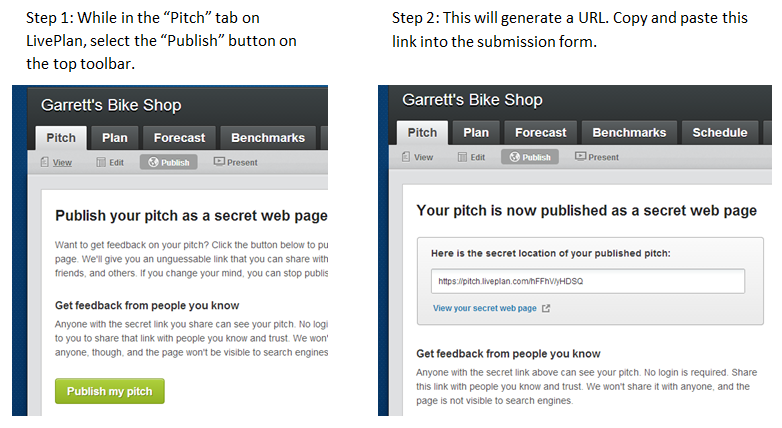 How to publish your Pitch in 2 steps.