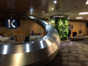 Living plant wall in the reception area of Klick Health.