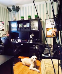 Natasha's home office.