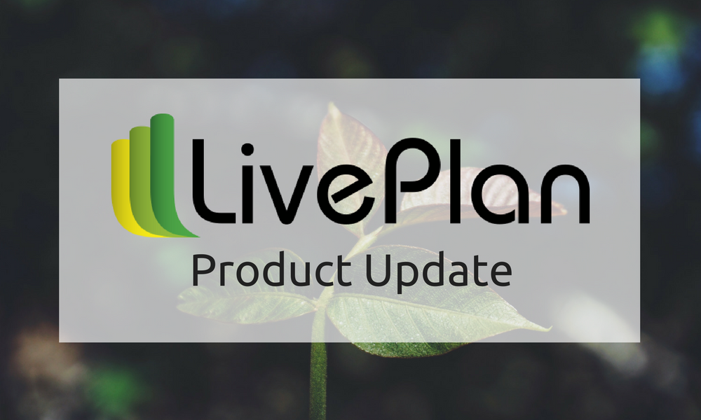 New Printing Options in LivePlan
