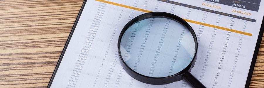 financial statements review